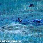 iceland_24