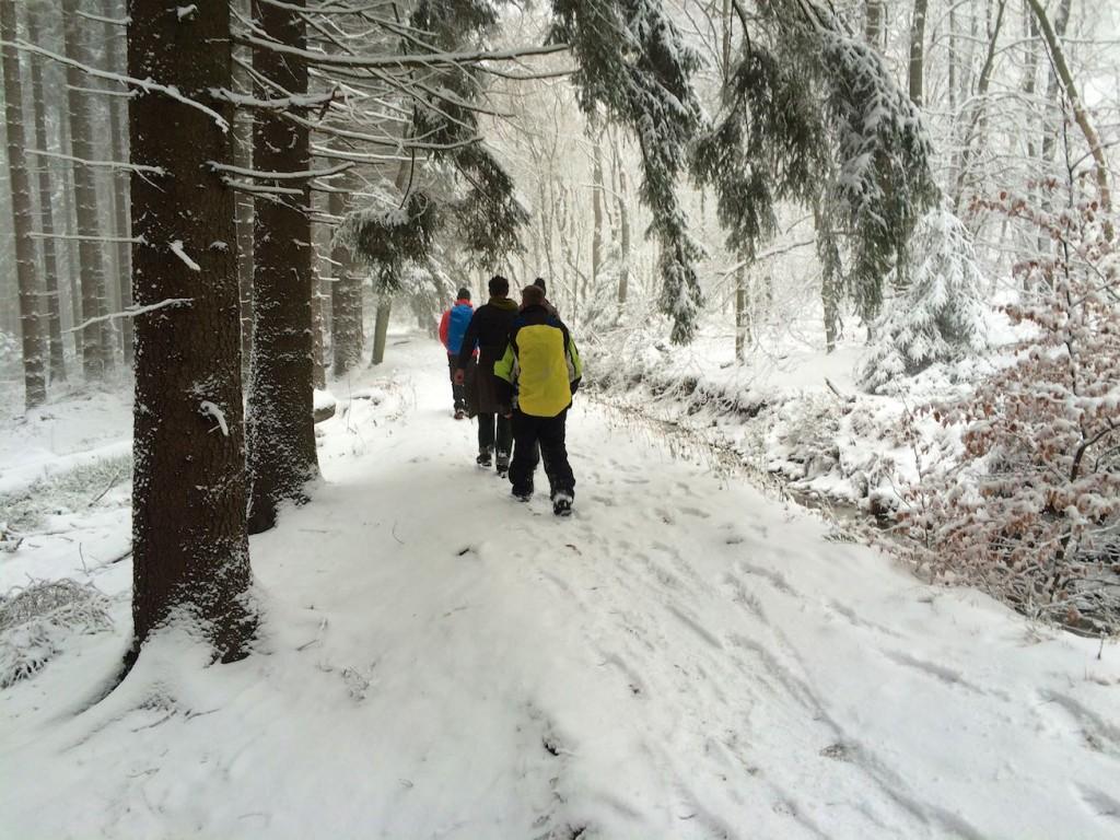 Wanderung auf der Struffelt Route