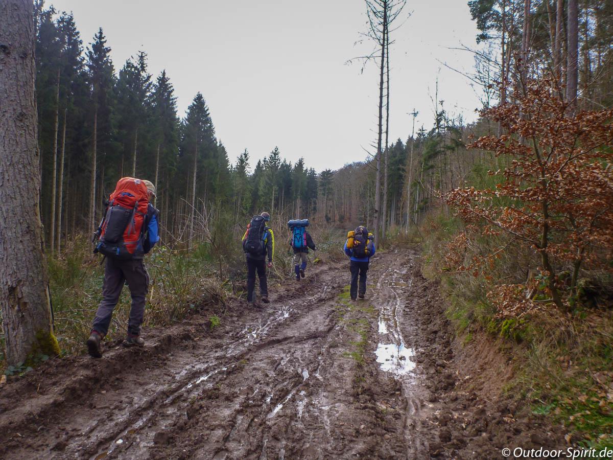 Regen und Forstarbeiten hinterlassen Spuren