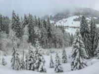 Aussicht vom Bergheim Moser